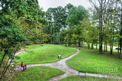 Path To The Mound Art Print by Larry Braun