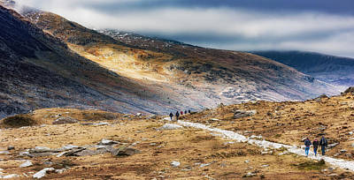 Photograph - Path To The Mountains by Nick Bywater