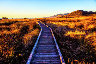 Photograph - Path To The Sea by Garry Gay
