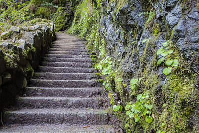 Photograph - Path To The Top by John McGraw