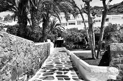 Photograph - Path Under The Palm In Mykonos Mono by John Rizzuto
