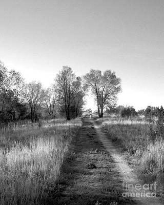 Jak Photograph - Path Yet Taken by Jack Norton