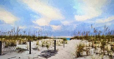 Photograph - Paths In South Walton by JC Findley