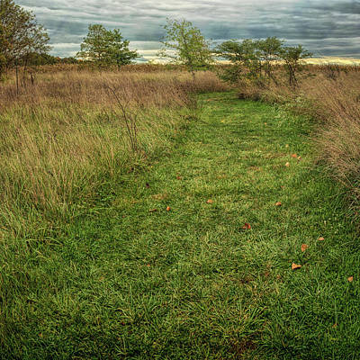 Photograph - Paths by John M Bailey
