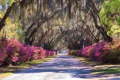 Photograph - Pathway At Bonaventure Cemetery by Kim Hojnacki