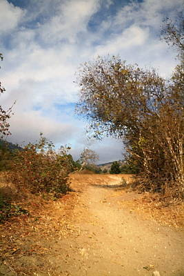 Photograph - Pathway At Garland Ranch Oil by Joyce Dickens