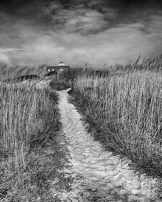Landscape Photograph - Pathway Black And White by Tom Gari Gallery-Three-Photography