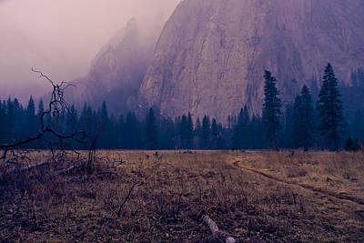 Pathway During First Snow In Yosemite Valley Art Print
