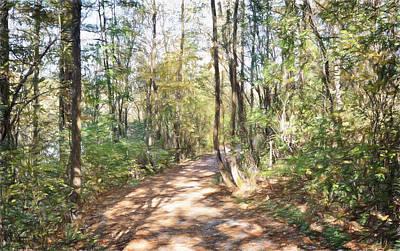 Pathway In The Woods Art Print by Rena Trepanier