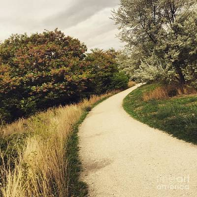 Photograph - Pathway by Louise Fahy