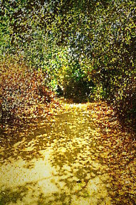 Photograph - Pathway Through The Trees At Garland Ranch Oil by Joyce Dickens