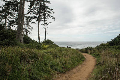 Photograph - Pathway To A Gray Sea by Tom Cochran