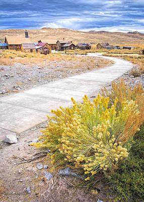 Photograph - Pathway To Bodie by LeeAnn McLaneGoetz McLaneGoetzStudioLLCcom