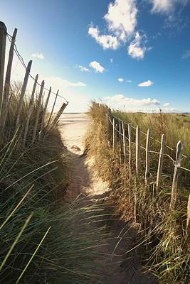 Photograph - Pathway To The Beach, Beadnell by John Short