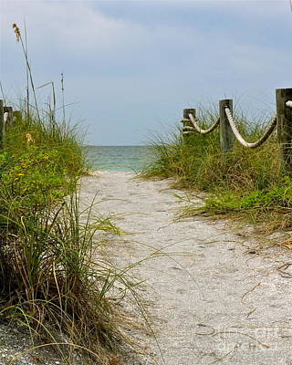 Photograph - Pathway To The Beach by Carol  Bradley
