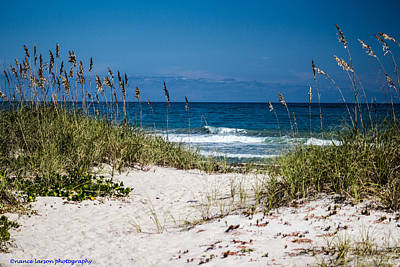 Photograph - Pathway To The Ocean by Nance Larson
