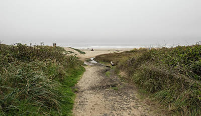 Photograph - Pathway To The Sea by Tom Cochran