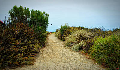 Photograph - Pathway To Zuma Beach by Glenn McCarthy Art and Photography