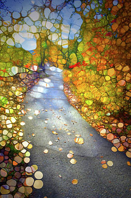 Digital Art - Pathways Of Light by Tara Turner