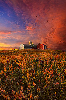 Red Barns Photograph - Patience by Phil Koch