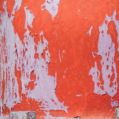 Photograph - Patina In Reds by Bill Tomsa