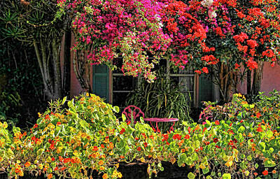 Photograph - Patio Garden With Cascading Bougainvillea And Nasturtiums by HH Photography of Florida