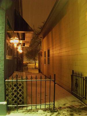 Photograph - Patio In The Snow by Anna Villarreal Garbis