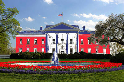 Photograph - Patriot In The White House by Gary Smith