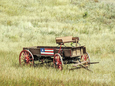 Photograph - Patriotic Buggy by Lynn Sprowl
