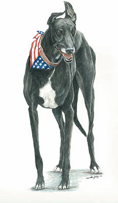 Colored Pencil Painting - Patriotic Greyhound by Charlotte Yealey
