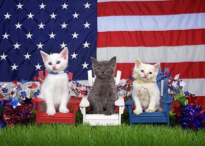 Kittens, Stars And Stripes Fur-ever Art Print