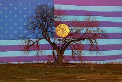 Patriotic Supermoon Tree Art Print by James BO Insogna