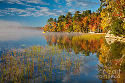 Photograph - Patten Pond by Susan Cole Kelly
