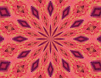 Art Print featuring the digital art Pattern II by Elizabeth Lock