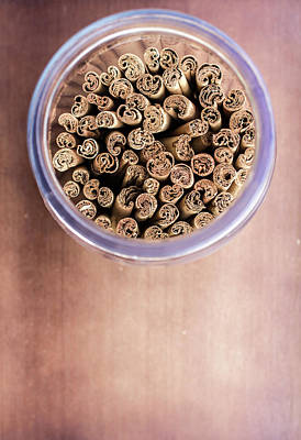 Photograph - pattern of Cinnamon  by Jingjits Photography