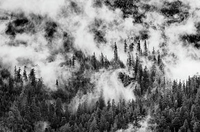 Photograph - Pattern Of The Mists by Greg Nyquist