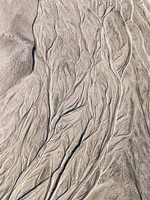 Photograph - Patterns In Sand At Baird Glacier Outwash by NaturesPix