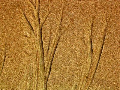 Patterns In The Sand Art Print by Elizabeth Hoskinson
