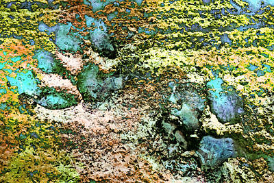 Photograph - Paw Prints Shades Of Green by Dorothy Berry-Lound