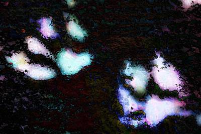 Photograph - Paw Prints Spooky by Dorothy Berry-Lound