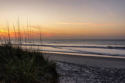 Photograph - Pawleys Island Beach Sunrise - South Carolina by Brian Harig