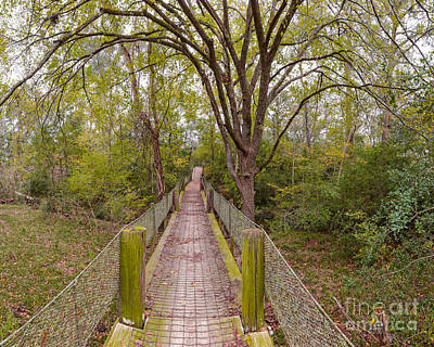 Walnut Tree Photograph - Paydirt Hanging Bridge At Bluff Creek Ranch In Warda - Texas by Silvio Ligutti