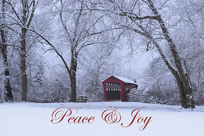 Photograph - Peace And Joy by Gene Walls