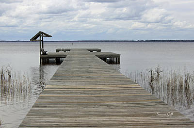 Lake Waccamaw Photograph - Peace And Serenity II by Suzanne Gaff