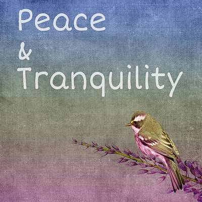 Digital Art - Peace And Tranquility  by Paulo Guimaraes