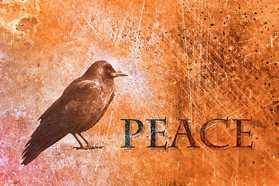 Corvid Photograph - Peace Greeting Card by Carol Leigh