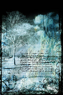 Photograph - Peace In The Storm by Susan McMenamin
