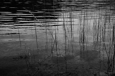 Photograph - Peace by Keith Elliott