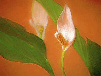 Mixed Media - Peace Lily Grace 10 by Lynda Lehmann