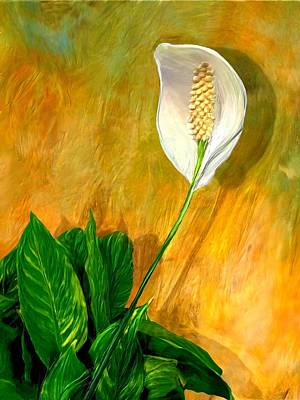Digital Art - Peace Lily Portrait by Ric Darrell